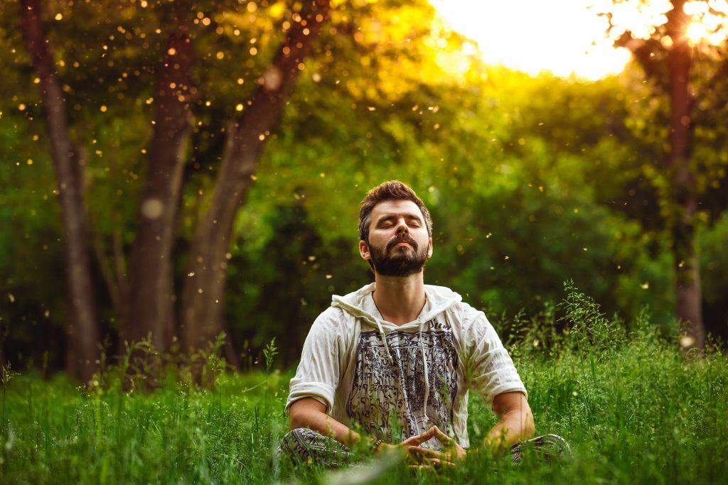 Meditazione Rassegna Stampa